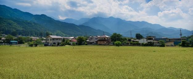bsPEZ88_tanbotoyama